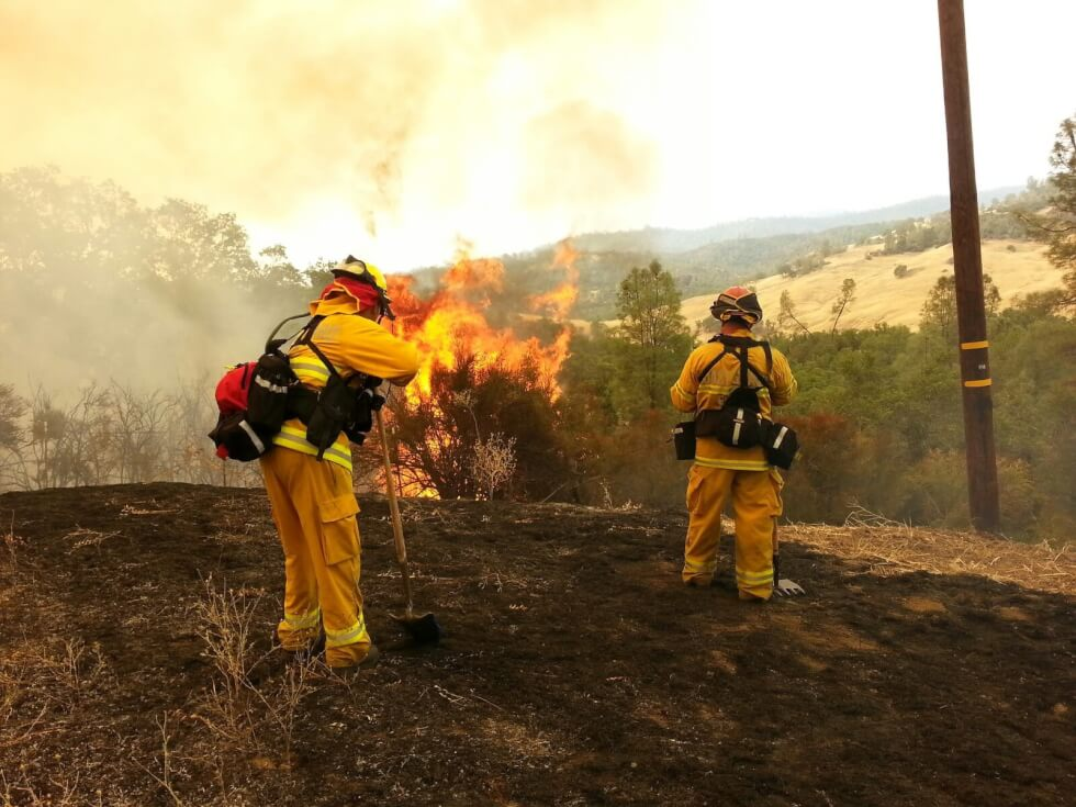 Wildland-Fire-photo